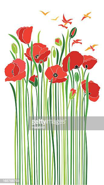 bouquet of scarlet poppies birds enjoying spring - poppy stock illustrations, clip art, cartoons, & icons
