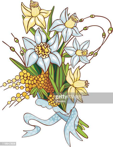 bouquet of yellow and blue daffodils with a mimosa twigs - paperwhite narcissus stock illustrations, clip art, cartoons, & icons