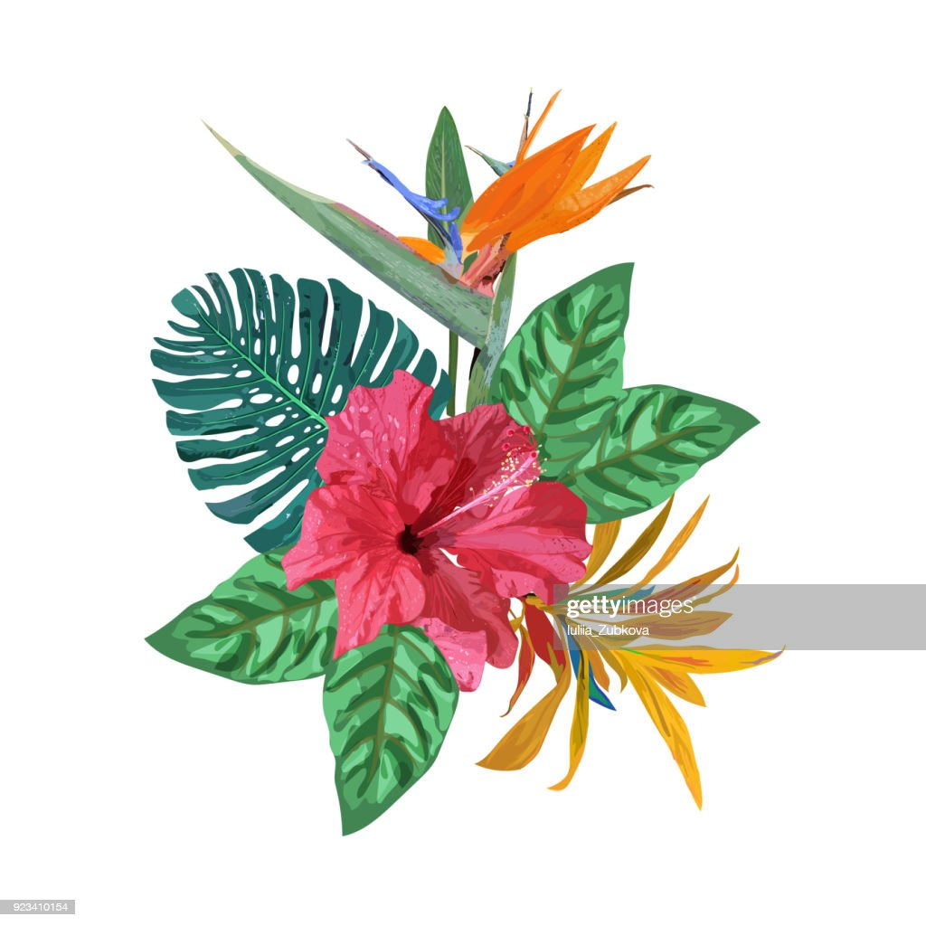 Bouquet with tropical plants. Set with palm leaves, red  hibiscu