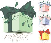 Boxed Present Sprouting - Give a Green Gift