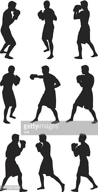 Boxer shadow boxing
