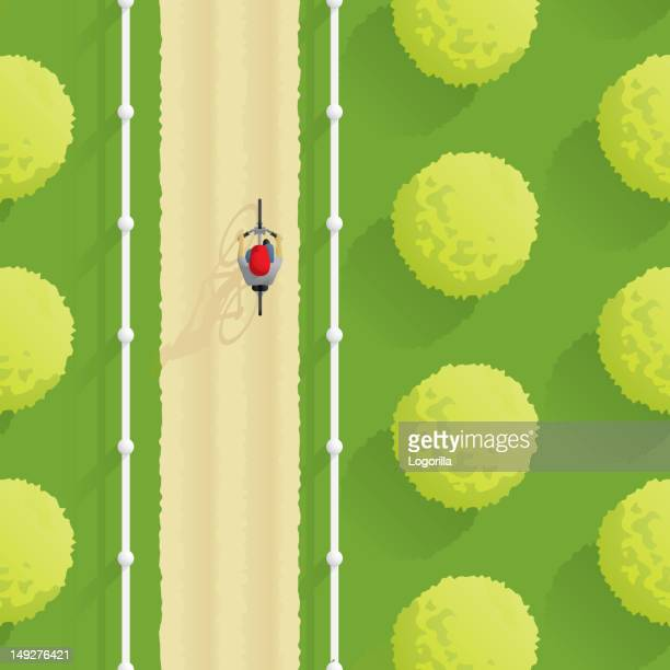 boy on a bicycle - aerial - gras stock illustrations