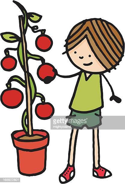 Ragazzo in piedi vicino a un grande Pianta di pomodoro