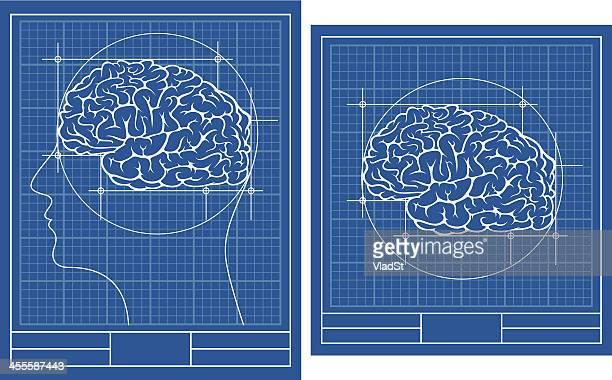 brain blueprint - medical diagram stock illustrations, clip art, cartoons, & icons