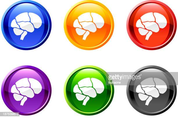 Brain button royalty free vector art