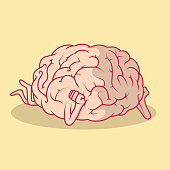 Brain dreaming vector illustration