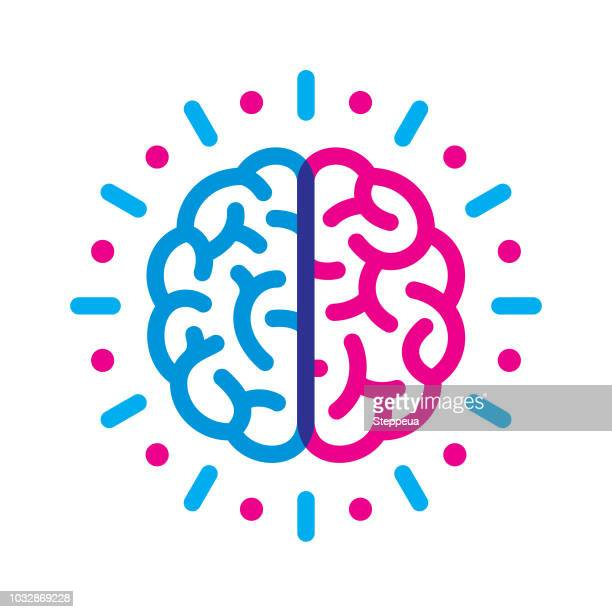 brain line icon - human nervous system stock illustrations