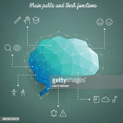 Brain parts and their functions depicted as icons