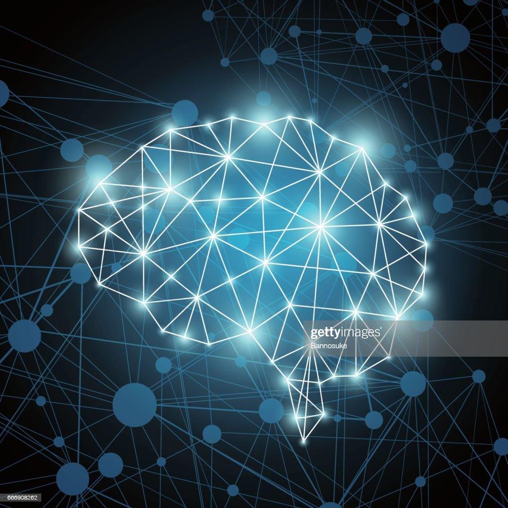 Brain polygon