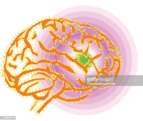 brain power - temporal lobe stock illustrations, clip art, cartoons, & icons