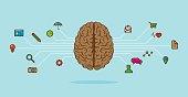 Brain scheme