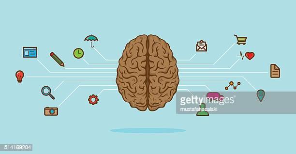 brain scheme - cerebral hemisphere stock illustrations, clip art, cartoons, & icons