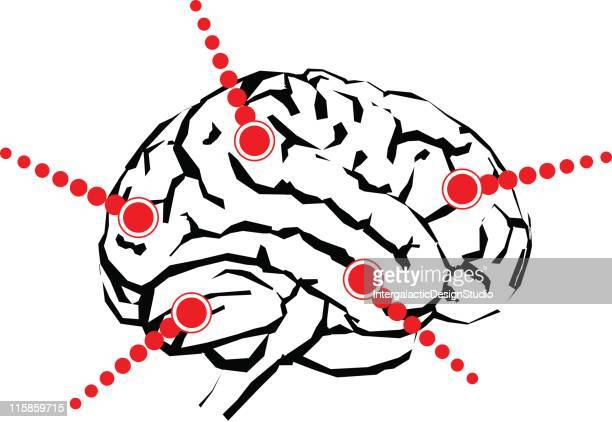 brain with callouts - temporal lobe stock illustrations, clip art, cartoons, & icons