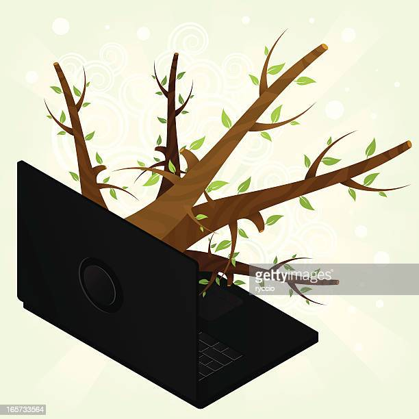 Branch coming out from a laptop