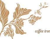 Branch of coffee tree. Vector illustration