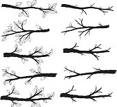 Branch Silhouettes with Leave- Illustration