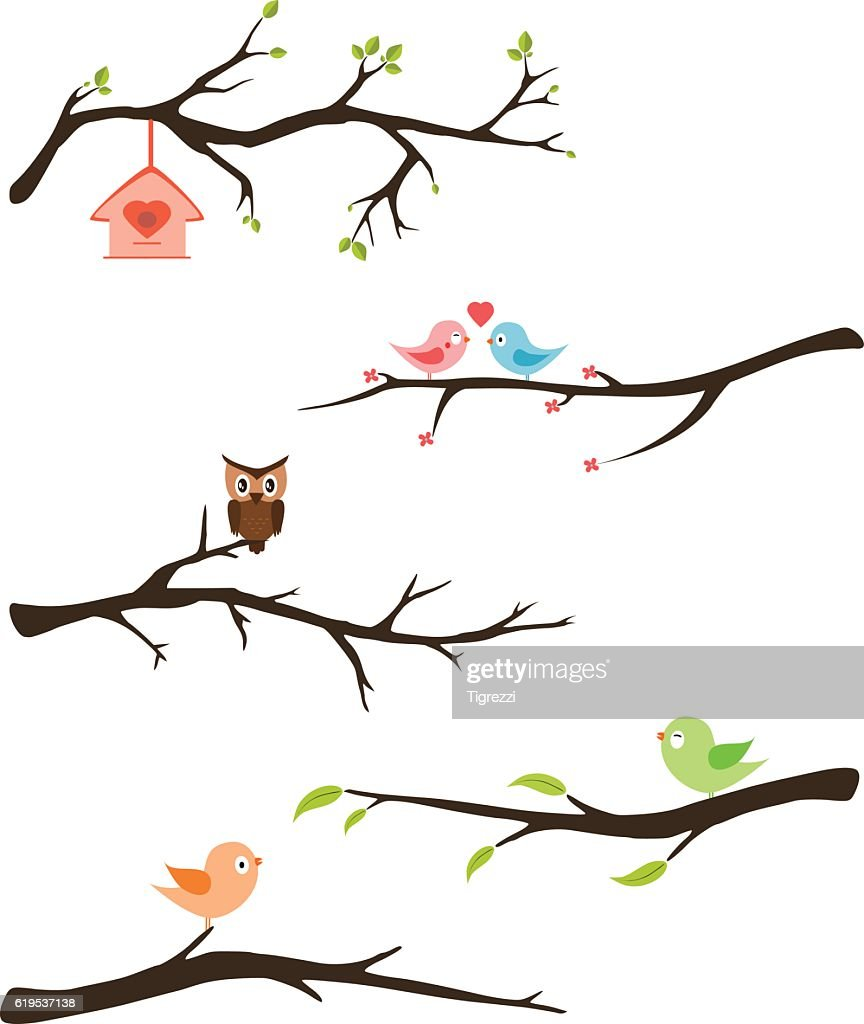 Branches with birds vector