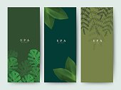 Branding Packaging palm coconut bamboo tree leaf nature background, banner voucher, spring summer tropical, vector illustration