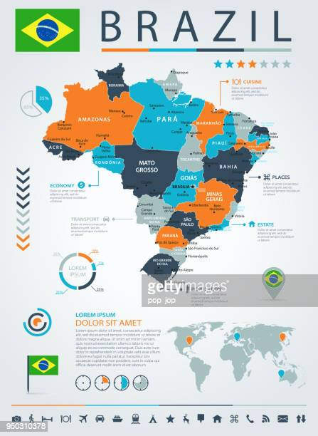 12 - Brazil - Blue-Orange Infographic 10