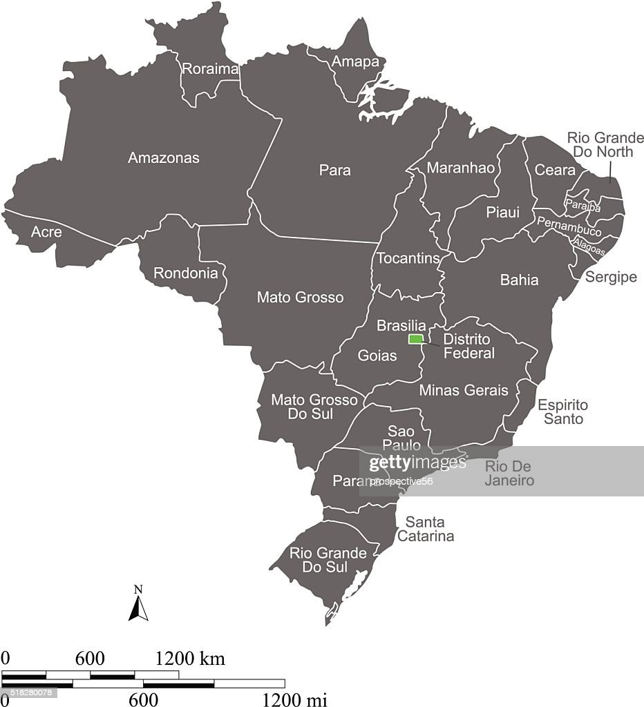 Brazil map vector outline with scales and states or provinces
