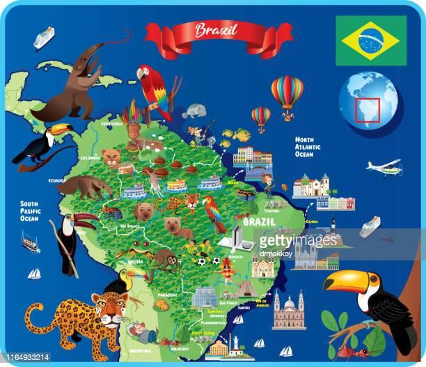 brazil travel map - anteater stock illustrations