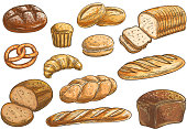 Bread sorts and bakery pencil sketch icons