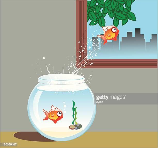 breaking boundaries - fishbowl stock illustrations, clip art, cartoons, & icons