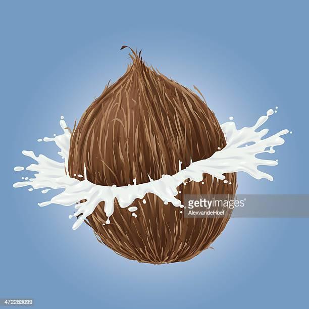 breaking coconut with splash of milk - coconut milk stock illustrations, clip art, cartoons, & icons