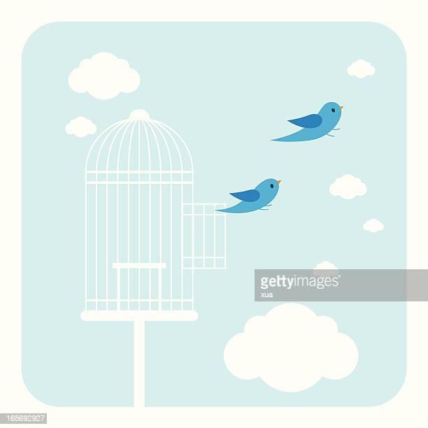 breakout - birdcage stock illustrations, clip art, cartoons, & icons