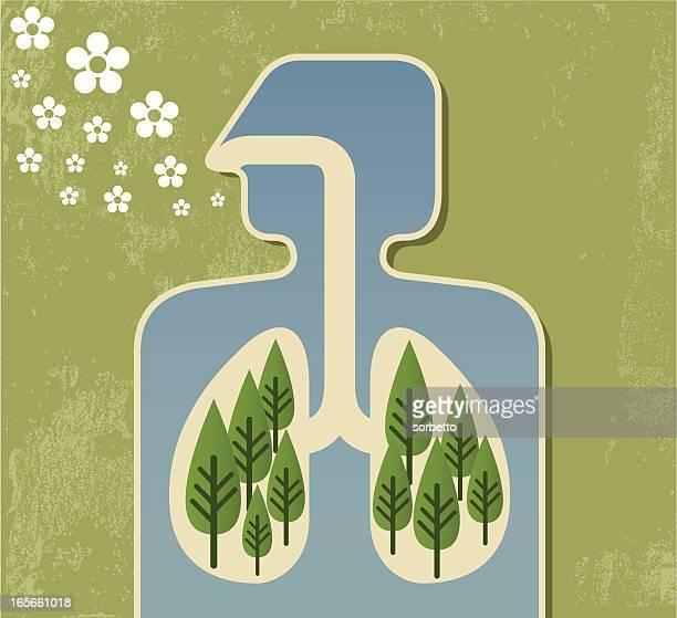 ilustraciones, imágenes clip art, dibujos animados e iconos de stock de respirar aire fresco - pulmones humanos
