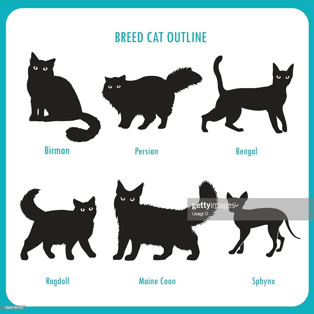 Breed Cat Outline Icons. Black And White Vector.
