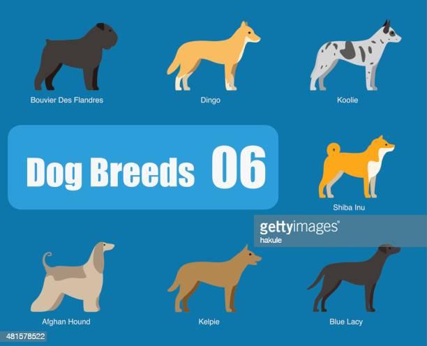 犬の攻撃独立したサイド、ベクター - オーストラリアンケルピー点のイラスト素材/クリップアート素材/マンガ素材/アイコン素材