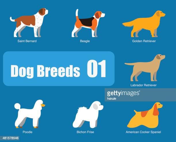 ilustraciones, imágenes clip art, dibujos animados e iconos de stock de razas de perros standing lado, vector - grupo grande de animales