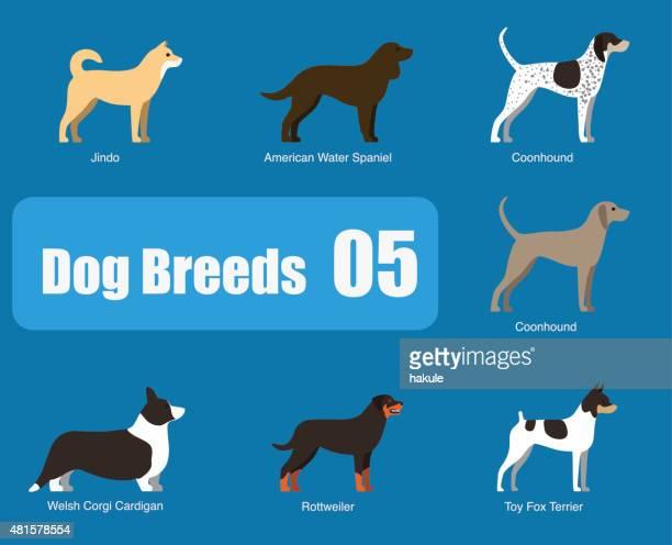 breeds of dog standing side, vector - purebred dog stock illustrations