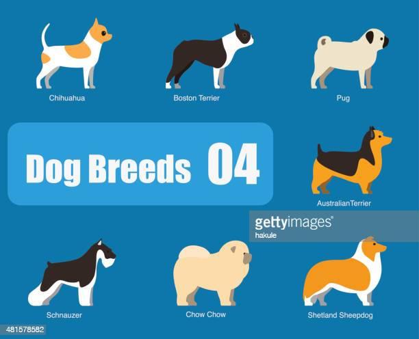 breeds of dog standing side, vector - dog breeds stock illustrations