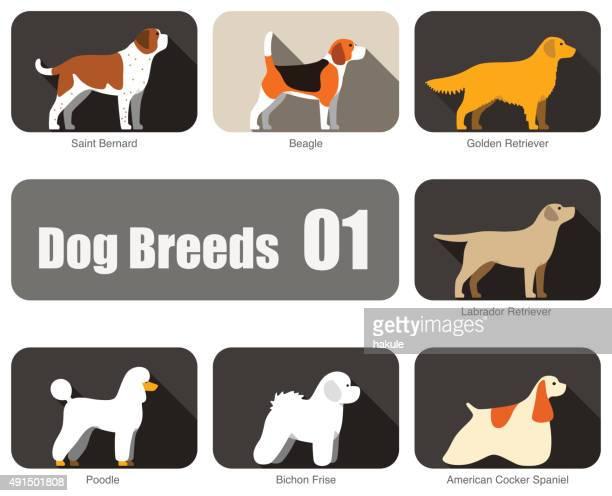 breeds of dog standing side, vector - golden retriever stock illustrations, clip art, cartoons, & icons