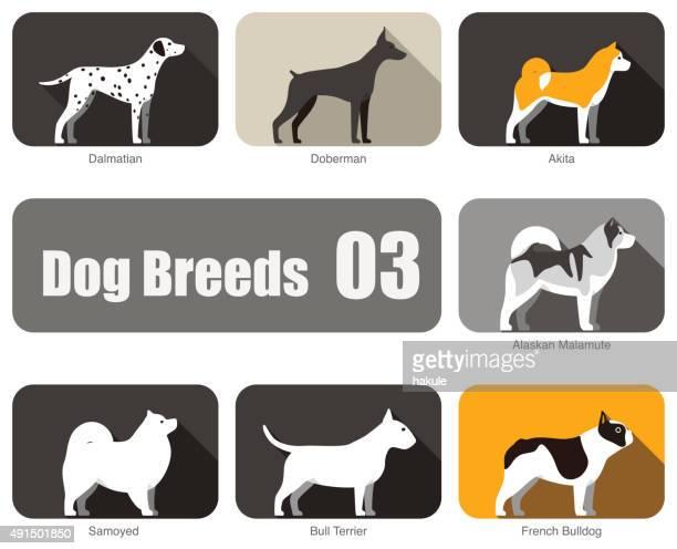 犬の攻撃独立したサイド、ベクター - マラミュート犬点のイラスト素材/クリップアート素材/マンガ素材/アイコン素材