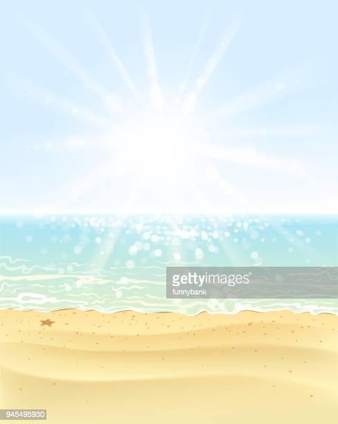 ilustraciones, imágenes clip art, dibujos animados e iconos de stock de playa brillante - estrella de mar