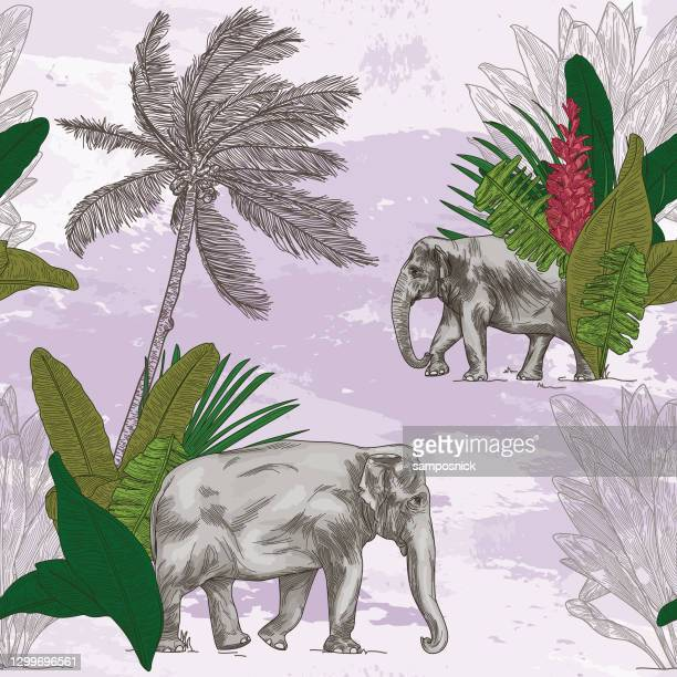 british colonial tropical elephant seamless pattern - british culture stock illustrations