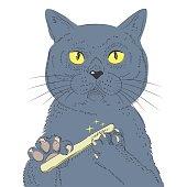 British Shorthair Cat Hand Draw Vector. Sketch Illustration Of Think Cat. Fashion Animal Illustration.
