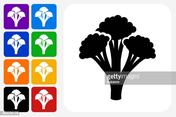 broccoli icon square button set - broccoli stock illustrations, clip art, cartoons, & icons