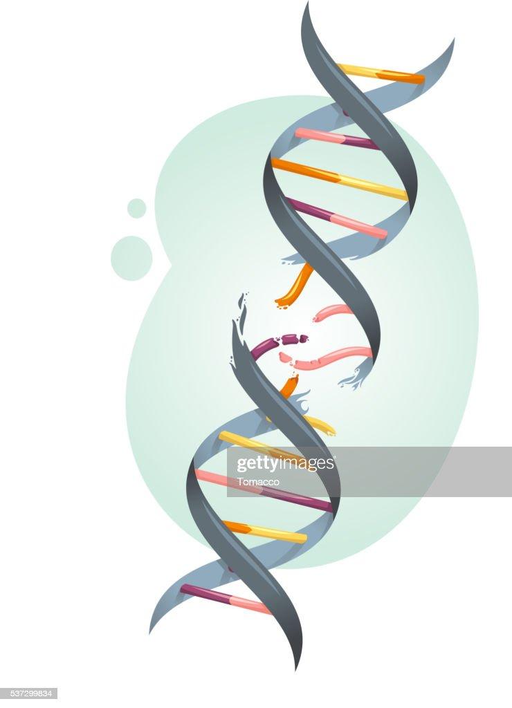broken DNA string