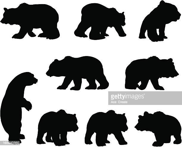 brown grizzly bear silhouette set - bear stock illustrations