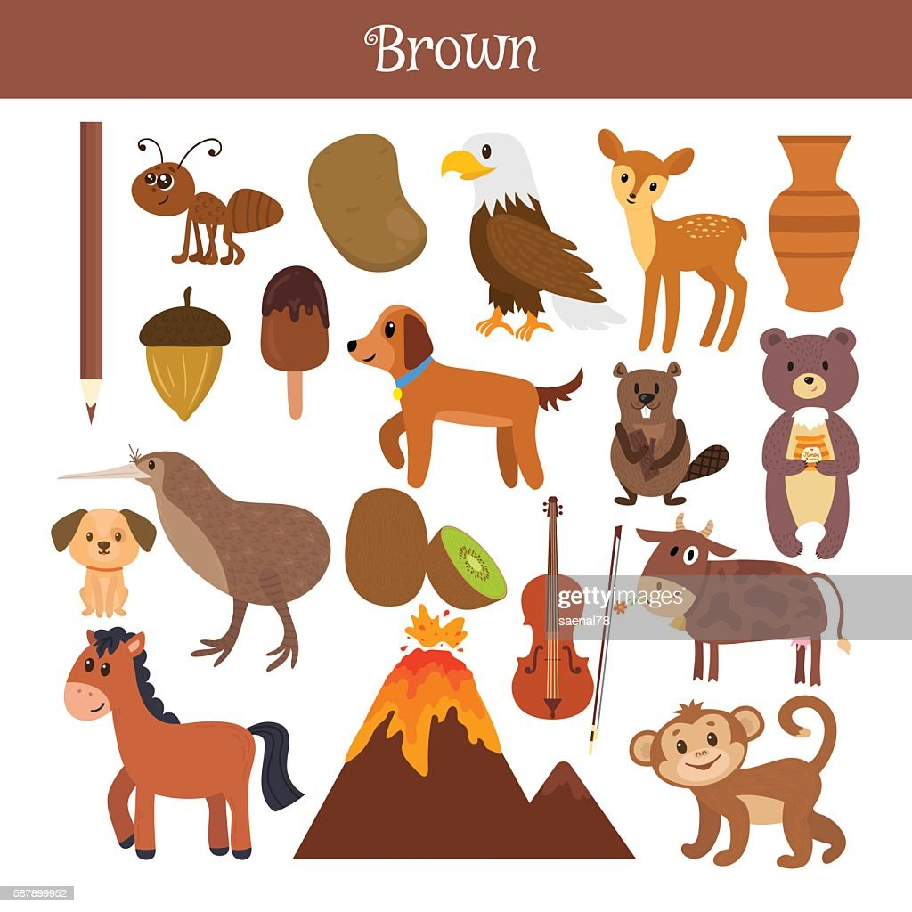 Brown. Learn the color. Education set