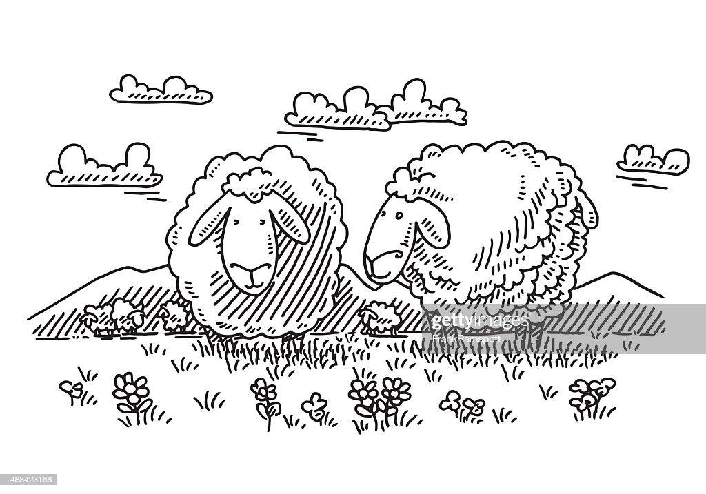 Browsing Cartoon Sheep On Meadow Drawing : stock illustration