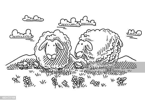 browsing cartoon sheep on meadow drawing - sheep stock illustrations, clip art, cartoons, & icons