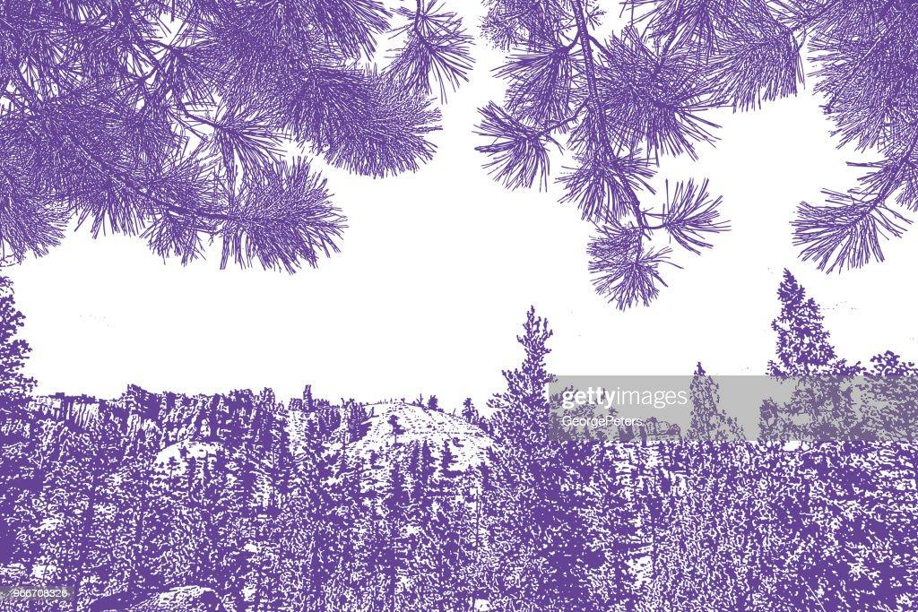 Bryce Canyon National Park and Ponderosa Pine needles background : stock illustration