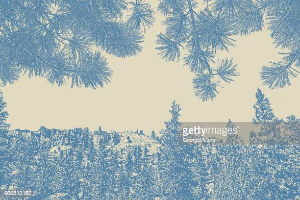 bryce canyon national park and ponderosa pine needles background - ponderosa pine tree stock illustrations, clip art, cartoons, & icons