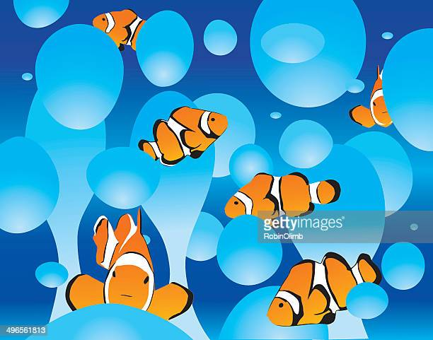 bubble lamp clown fish - anemonefish stock illustrations, clip art, cartoons, & icons