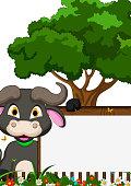 buffalo cartoon with blank sign on garden
